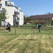 InfoFotos_Gartenaktivitäten5