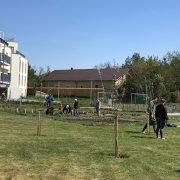 InfoFotos_Gartenaktivitäten8